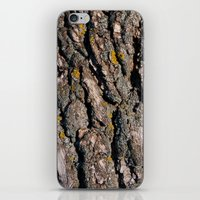 Tree Bark 1 iPhone & iPod Skin