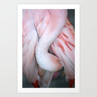 Flamingo #9 Art Print