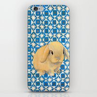 Charlie the Rabbit iPhone & iPod Skin