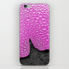 pink ginkgo leaf I iPhone & iPod Skin
