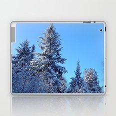 Breathtaking Laptop & iPad Skin