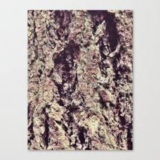 Tree Bark 2.0 Canvas Print