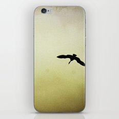 EGRET iPhone & iPod Skin