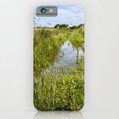 Horsey Island  iPhone 6 Slim Case