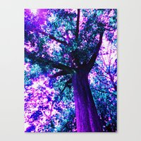 In the Presence of Giants Canvas Print