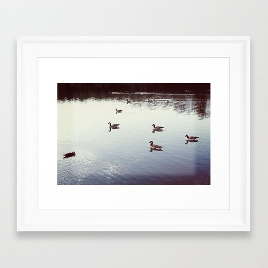 Geese 2 Framed Art Print