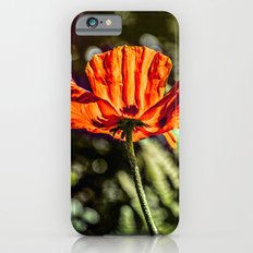 Glowing Poppy  iPhone 6s Slim Case