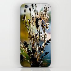 Implosion iPhone & iPod Skin