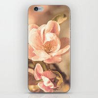 Pretty In Pink. iPhone & iPod Skin
