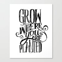 Grow Where You Are Plant… Canvas Print