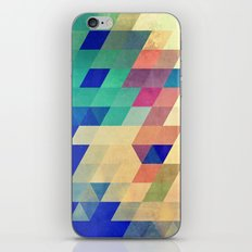 dyrzy iPhone & iPod Skin