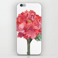 Peonies iPhone & iPod Skin