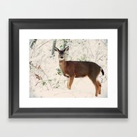 Deer In Winter Framed Art Print