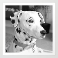 Spotty Dotty Dalmatian Dog Art Print