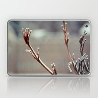 Frozen II Laptop & iPad Skin