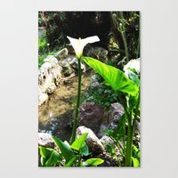THE OTHER WORLD Canvas Print