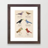 Birds, Herbs, and their Uses Framed Art Print