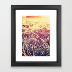 frosty sunrise Framed Art Print