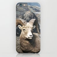 iPhone & iPod Case featuring Tom Feiler Sitting Ram by Tom Feiler