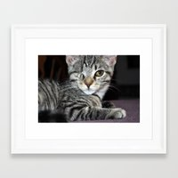 One-Eyed Wonder Framed Art Print