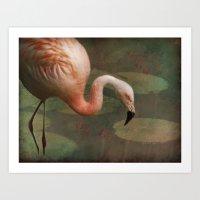 The Flamingo Art Print