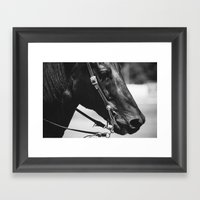 STEED Framed Art Print