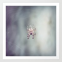 Spider Song Art Print
