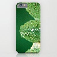 San Diego, California iPhone 6 Slim Case