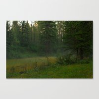 Magical mist Canvas Print