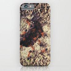 Ants iPhone 6 Slim Case