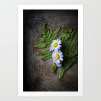 Woodland Aster  Art Print