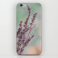 Lavender By The Window iPhone & iPod Skin