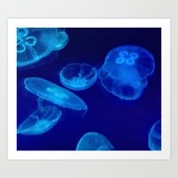 jellyfish Art Prints featuring 🔵 Jellyfish by Tru Images Photo Art