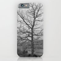 iPhone & iPod Case featuring Tree by lokiandmephotography