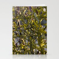 Moss In The Spring Stationery Cards
