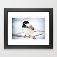Up Close With A Chickadee Framed Art Print