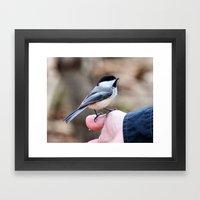 Lets Feed The Birds Framed Art Print