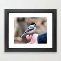 lets feed the birds Framed Art Print