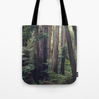 The Redwoods at Muir Woods Tote Bag