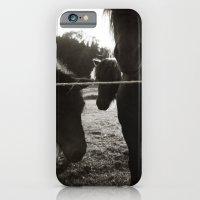 { pony pals } iPhone 6 Slim Case