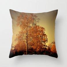 Morgenstimmung auf der Heide Throw Pillow