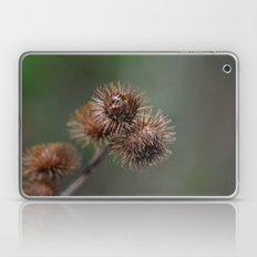 Piri Piri Burr Laptop & iPad Skin