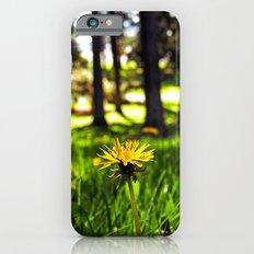 Park dandelion Slim Case iPhone 6s