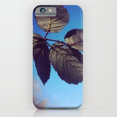 Leaves-Autumn iPhone 6 Slim Case