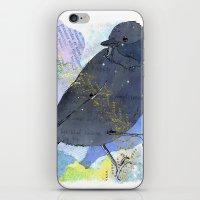 Vinter fugl iPhone & iPod Skin