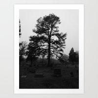 Spooky Tree IV Art Print