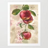 Apple painting, fruit paintings, watercolor apples, watercolour fruit print, garden lover gift,  Art Print