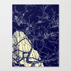 Lights Canvas Print