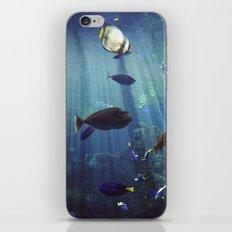 Under the Sea iPhone & iPod Skin