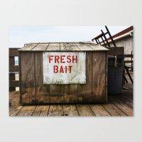 Fresh Bait Canvas Print